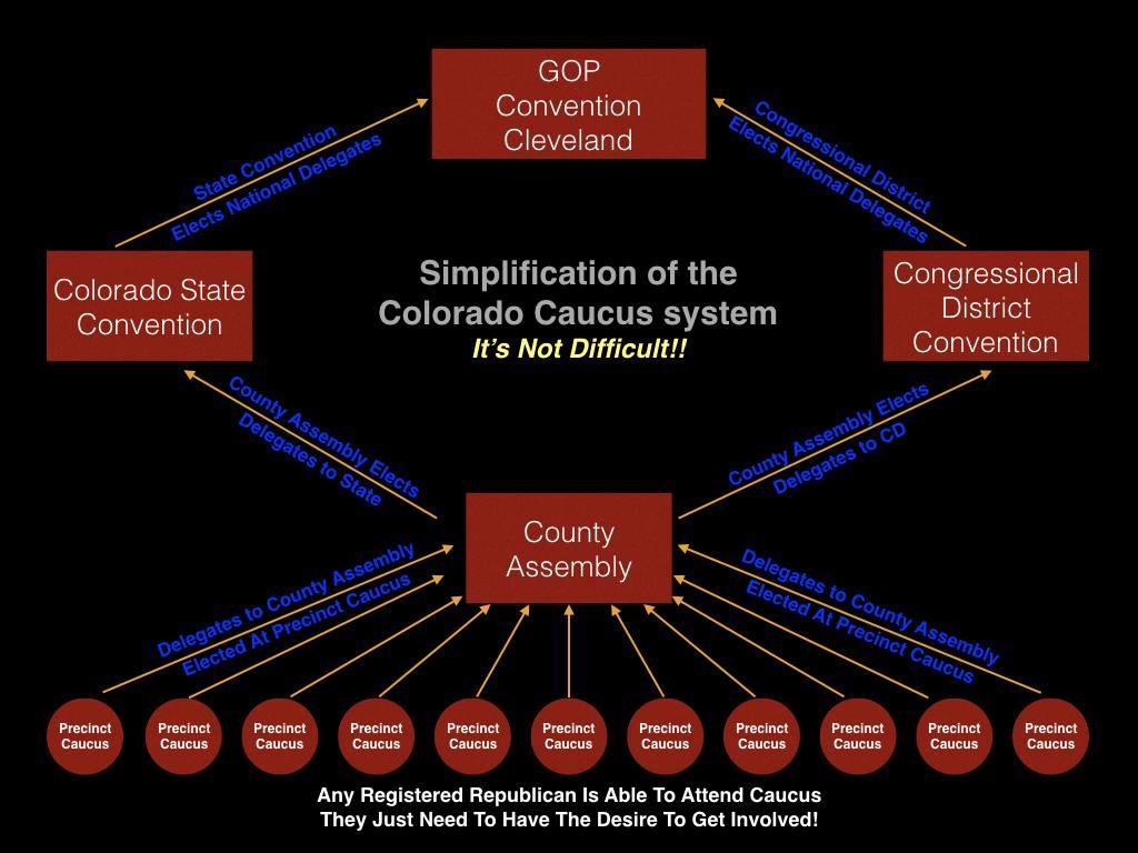 Colorado Caucus System