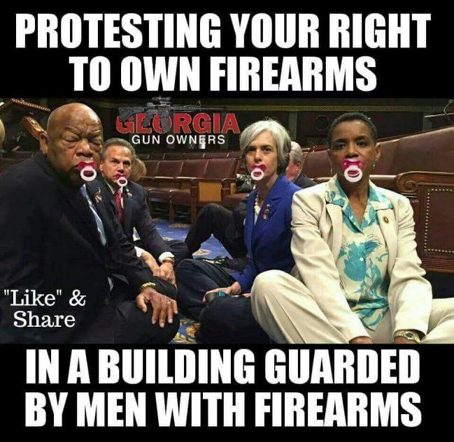 dems protest guns